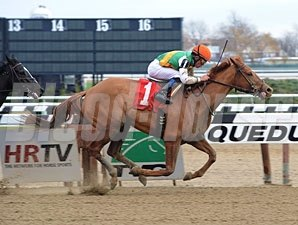 Miss Valentine wins the 2012 Chase the Dream Stakes.