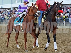 I'll Have Another and Lava Man at Preakness 137.