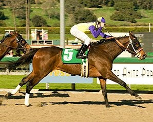 Final Fling Fires Upset in 'Ysabel