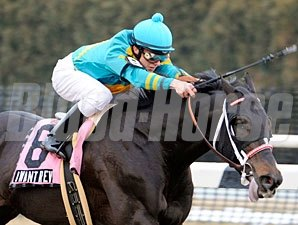 I Want Revenge wins the 2009 Gotham.