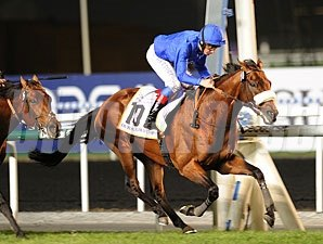 Opinion Poll wins the 2012 Dubai Gold Cup.