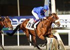 Opinion Poll Wins Ill-fated Dubai Gold Cup