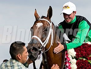 The Pizza Man wins the 2014 American St. Leger.