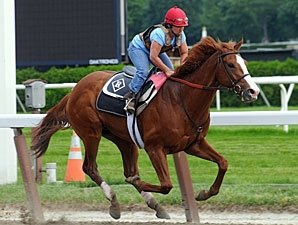 Romans Says Shackleford a 'Go' for Belmont