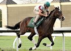 Blue Grass Hopeful Newsdad Works for Mott