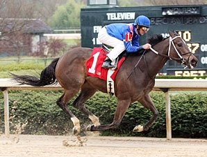 Streaking Hot Dixie Chick Heads Eight Belles