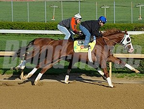 Will Take Charge works at Churchill Downs 4/21/2013.