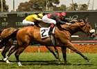 Gotta Have Her Grabs Royal Heroine Mile