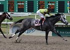 Kelso Could Make it Four Straight for Graydar