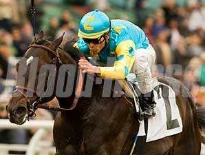 Pioneerof the Nile captures the Robert B. Lewis