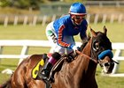 Hollywood Gold Cup: No Denying Dude This Time