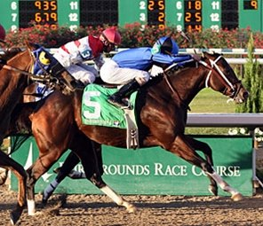 Six Stakes at Fair Grounds Jan. 12