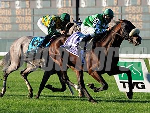 Winchester wins the 2010 Joe Hirsch Turf Classic Invitational Stakes.