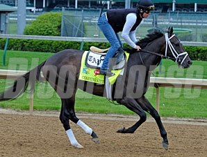 Charming Kitten preps for the Kentucky Derby at Churchill Downs.