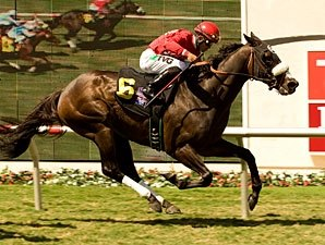 Enriched Takes Shot at Cal Cup Classic
