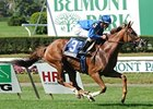 Hessonite, Lubash Take New York-Bred Stakes