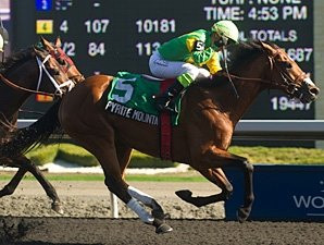 Champ Uncaptured Collared in Woodbine Return