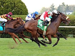 American Turf Attracts Jam-Packed Field