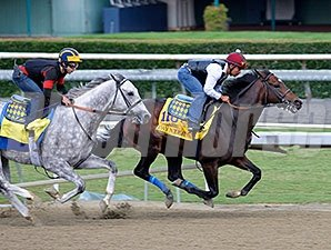 Paynter at Santa Anita for the Breeders' Cup.