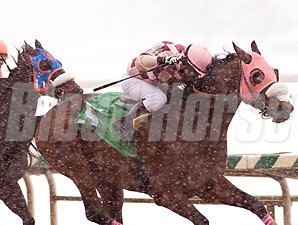 Greenspring ridden by Jeremy Rose wins the $150,000 General George Handicap (Grade 2) for older horses at Laurel Park in Maryland on Monday, Feb. 15, 2010.