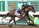Owners Say Paynter Could Return to Racing