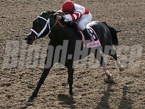 Honest Man wins the 2009 Mineshaft.