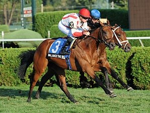 Maiden Balance the Books Adds Up at Spa