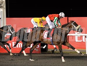 Bankable wins the 2011 Mahab Al Shimaal.