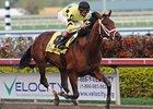 Quality Road Gets Back to Work in Florida
