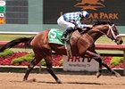 Coyote Legend Favored For Super Derby Prelude