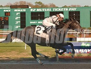 General Quarters wins the Sam F. Davis Stakes at Tampa Bay Downs
