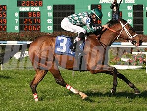 Grand Tranverse wins the 2009 Bonapaw.
