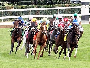 Tax Break on Racehorses Passes Congress
