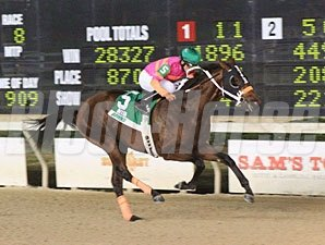 My Adonis wins the 2011 Jean Lafitte Stakes.