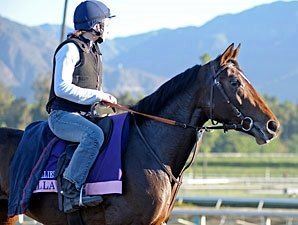 Euros Arrive, Take to Track at Breeders' Cup
