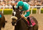 Zenyatta Weaves to 15th Win in a Row