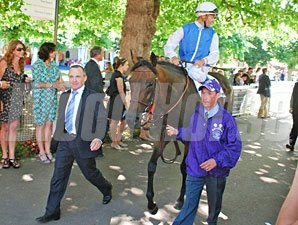 Goldikova after running in the Prix Jacques Le Marois