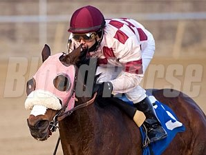 Greenspring ridden by Jeremy Rose wins the $70,000 Native Dancer Stakes for older horses at Laurel Park in Maryland on Saturday, Jan. 2, 2010.