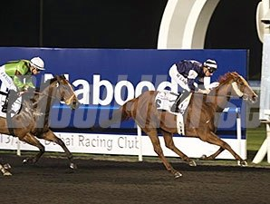 Medicean Man wins the 2014 Swaidan Trading Heavy Equipment Division Trophy.