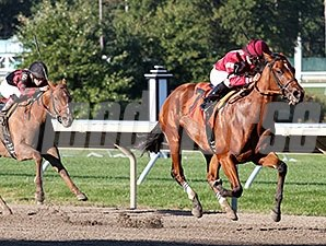 Posse Dreamin wins the 2014 Jersey Juvenile Stakes.