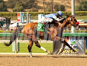 Goldencents wins the 2013 Santa Anita Derby.