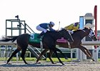 Black-Eyed Susan Tops Friday Stakes