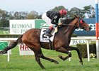 McGaughey Says Point of Entry in HOY Picture