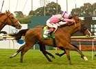 Fantastic Pick Upsets Oak Tree Derby