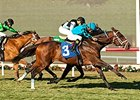Finnegans Wake Prevails in Hollywood Turf Cup