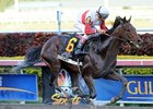 Orb Looks Golden With Powerful Florida Derby