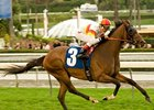 Bourbon Bay, 'Pegasus Clash Again in 'Obispo