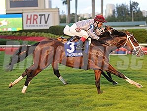 Mshawish wins the 2015 Ft. Lauderdale Stakes.