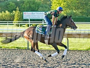 Stars to Shine - Arlington Park, August 17, 2012.