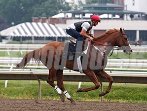 Shackleford - Monmouth Park, July 29, 2011.